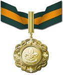 Distinguished Service Gold Medal